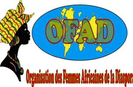 Diaspora : forum économique entrepreneurial des femmes africaines à Paris