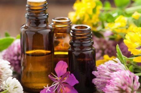 Soins capillaires : comment choisir votre huile essentielle ?