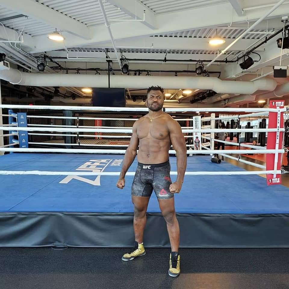 Le boxeur Francis Ngannou