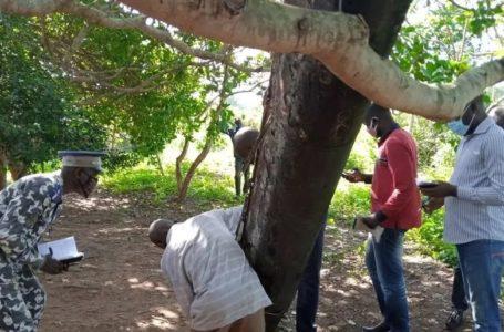 Côte d'Ivoire: enquêtes ouvertes sur un objet tombé du ciel