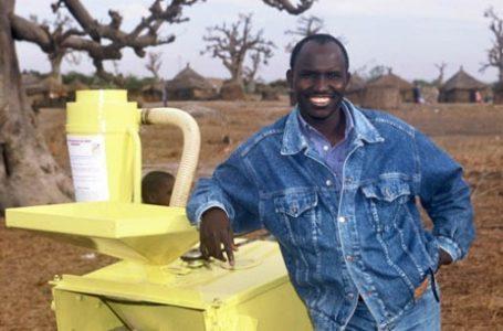 Voici comment le Sénégalais Sanoussi DIAKITE mettra fin aux ravages des criquets