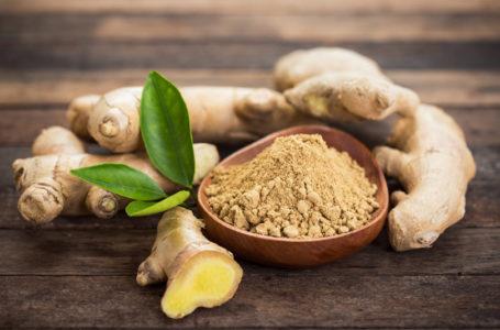 Les vertus thérapeutiques du gingembre