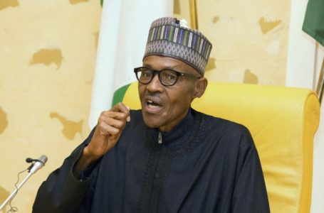 F CFA-ECO: la démarche solitaire de l'UEMOA risque de détruire la CEDEAO selon le Nigéria