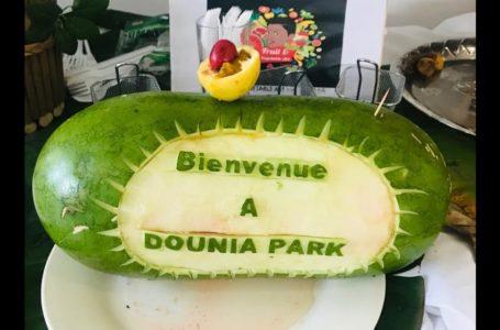 À la découverte des trésors du Gabon