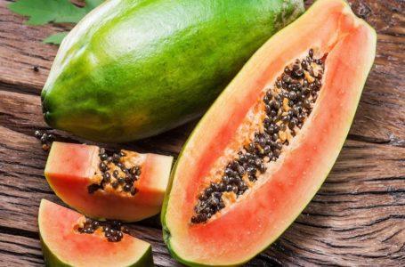 Tout savoir sur la papaye!