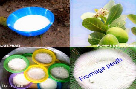 Comment fabrique t-on le fromage peulh?