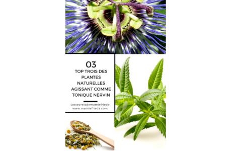 Top trois (03) des plantes naturelles agissants comme tonique nervin